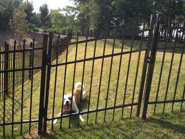Style A Aluminum Fencing Residential Fence Installation